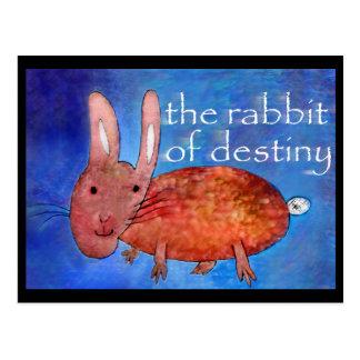 運命[郵便はがき]のウサギ ポストカード