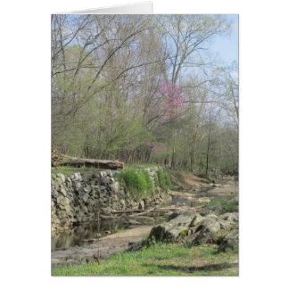 運河に沿う春 カード