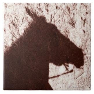 道の床の碧玉の乗馬の馬の頭部の影 タイル