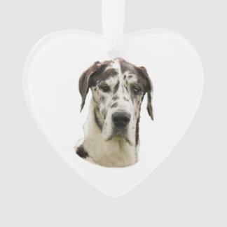 道化師のグレートデーン犬の写真 オーナメント