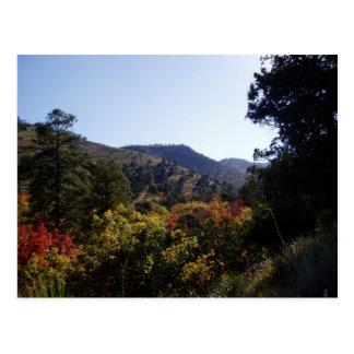 道-道からの渓谷に沿って ポストカード