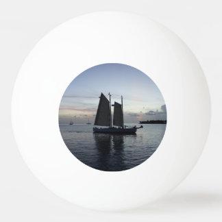 遠くにな帆を来て下さい 卓球ボール