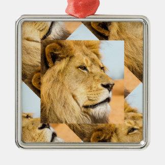 遠くに見ている大きいライオン メタルオーナメント