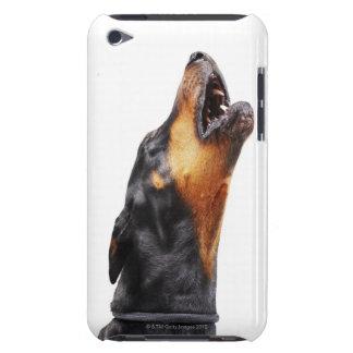 遠ぼえしているドーベルマン犬クローズアップ Case-Mate iPod TOUCH ケース