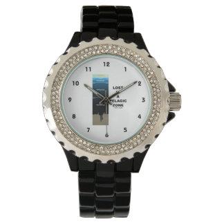 遠洋の地帯(海洋学のユーモア)で失った 腕時計