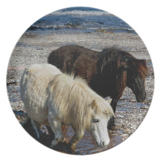 遠隔ビーチのデボン南2シェトランド諸島の子馬 プレート