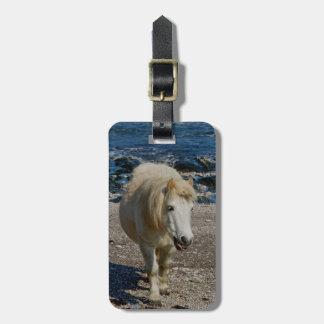 遠隔ビーチの南デボンシェトランド諸島の子馬の歩く ラゲッジタグ