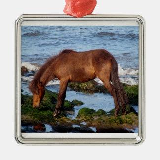 遠隔南デボンのDartmoorの子馬の食べ物の海藻 メタルオーナメント