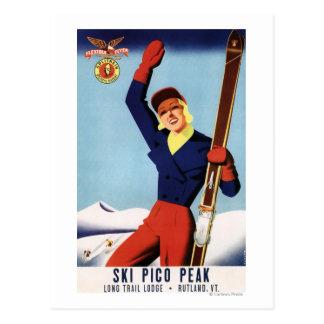 適用範囲が広いフライヤPinのスキー女の子 ポストカード