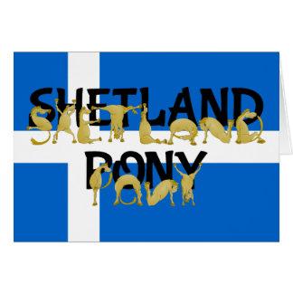 適用範囲が広い子馬-シェトランド諸島 カード