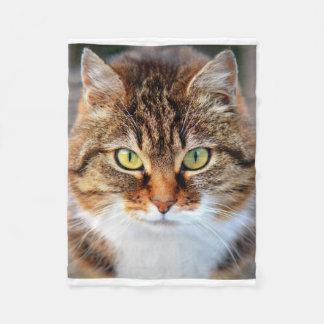 選り抜き動物ペット猫のアメリカ人Shorthair フリースブランケット