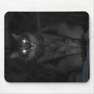 邪悪な猫のマウスパッド マウスパッド