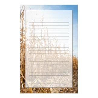 部分的に収穫されたトウモロコシ畑 便箋