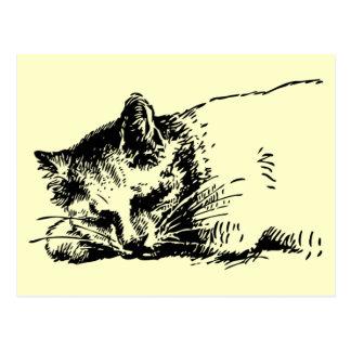 郵便はがきの睡眠猫 ポストカード