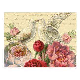 郵便はがき: バラを持つヴィンテージの鳩 ポストカード