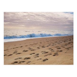 郵便はがき: プライアはTrafalのビーチをします。 ポルトガル ポストカード