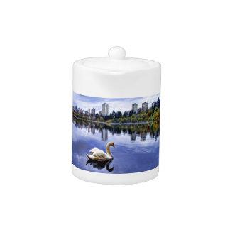 都市の白い白鳥の水泳