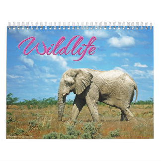 野性生物 カレンダー