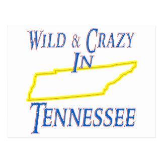 野生および熱狂するなテネシー州- ポストカード