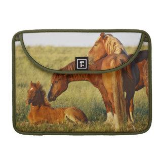 野生に馬のEquusのcaballusの)大人に臭いがすること MacBook Proスリーブ