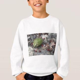 野生のきゅうり スウェットシャツ