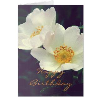 野生のばら色の開花カード カード