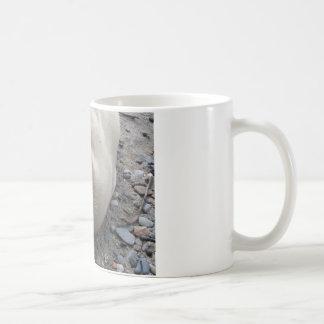 野生のアラスカのシール コーヒーマグカップ