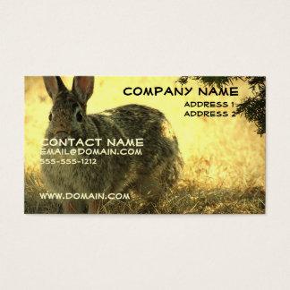 野生のウサギの名刺 名刺