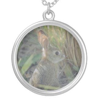 野生のウサギ シルバープレートネックレス