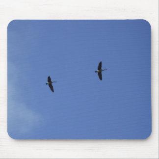 野生のガチョウ青い空 マウスパッド