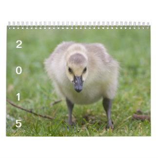 野生のガチョウ2015年-ガチョウのカレンダー カレンダー