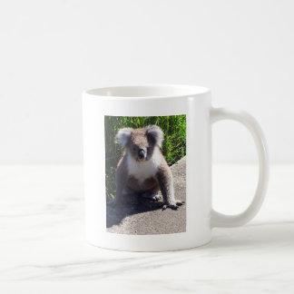野生のコアラ コーヒーマグカップ
