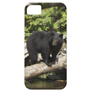 野生のツキノワグマの野性生物の写真を捜すこと iPhone SE/5/5s ケース
