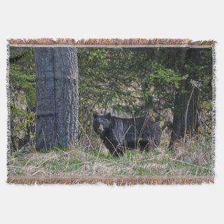 野生のツキノワグマの野性生物の写真を牧草を食べること スローブランケット