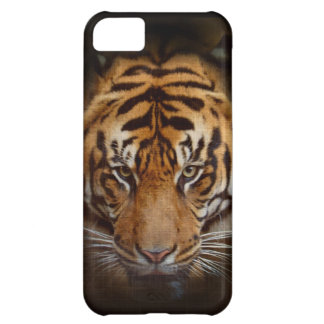 野生のトラの野性生物のファインアートの移動式iPhoneの場合 iPhone5Cケース