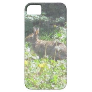 野生のバニーのiPhone 5の場合 iPhone SE/5/5s ケース
