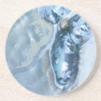 野生のマレーシアの真珠母 コースター