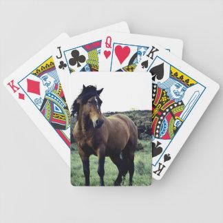 野生のムスタングのカジノカード バイスクルトランプ