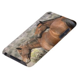 野生のムスタングの馬の接触 Case-Mate iPod TOUCH ケース