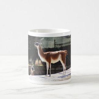 野生のラクダ コーヒーマグカップ