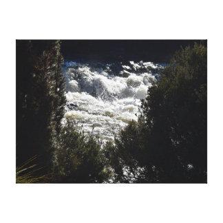 野生の川の揺りかご山タスマニアオーストラリア キャンバスプリント