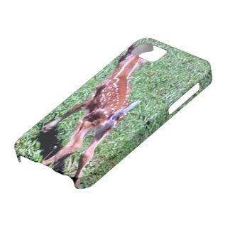 野生の新生のシカの子鹿 iPhone SE/5/5s ケース