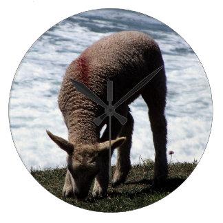 野生の海岸線で牧草を食べる南デボンLambe ラージ壁時計