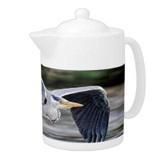 野生の灰色の鷲の鳥の飛行中に写真
