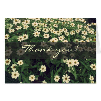 -野生の白い花ありがとう カード