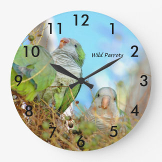 野生の緑のクエーカー教徒は柱時計をオウム返しします ラージ壁時計