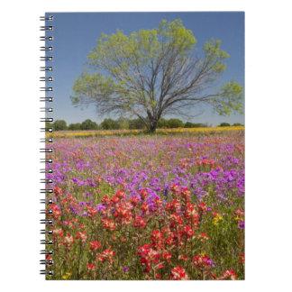 野生の花で育つ春のmesquiteの木 ノートブック
