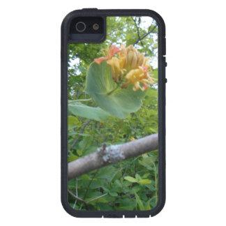 野生の花のつる植物および枝iPhone 5/5Sの場合 iPhone SE/5/5s ケース