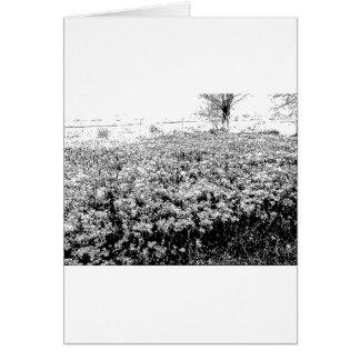 野生の花の侵入 グリーティングカード