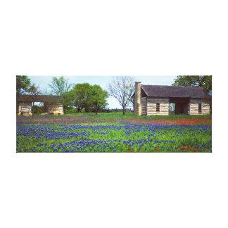 野生の花の分野の古い犬の操業小屋 キャンバスプリント